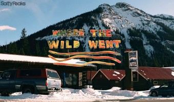 where-the-wild-went