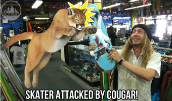 skateboard-cougar-attack