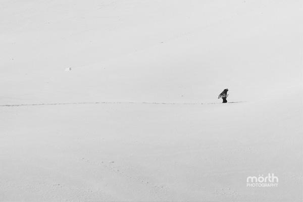 Tyler-Morton-Hiking