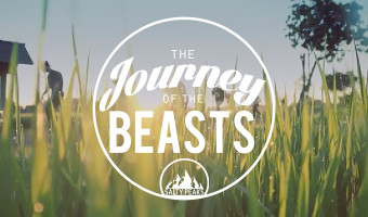 The-Journey-of-The-Beasts-Sebastian-Linda-Skateboard-Video