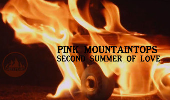 pink mountaintops skate video