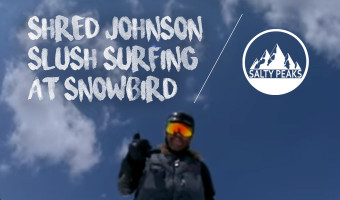 Slush Surfing Snowbird