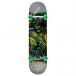 Darkstar Pirate Youth Mid Complete Skateboard