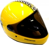 Sector Nine Men's Predator Downhill Division Helmet