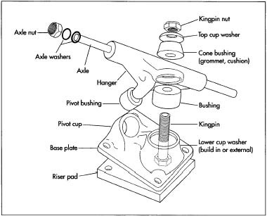 How To Pick Out Longboard Trucks